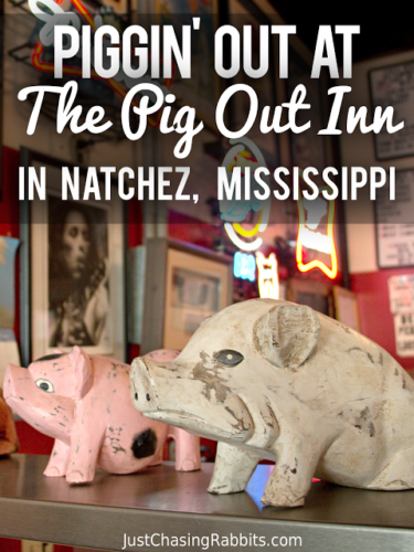 Pig out on barbecue at the Pit Out Inn barbecue restaurant in Natchez, Mississippi. Leave room for their famous buttermilk pie!   #visitms #Mississippi #USA   Things to do in Mississippi   Where to eat in Mississippi   #natchez #travel