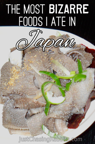 The Most Bizarre Foods I Ate in Japan, including cow stomach, raw liver, and oxtail soup. And one of these things is now illegal to serve! If you're headed to #Japan and want to try something different, here are some options!   #JapaneseFood   #Travel   #Bizarrefood   #Eatlikealocal   #WhattoEatinJapan   #BucketList