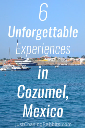 6 Things To Do in #Cozumel #Mexico   Check out our list of fantastic experiences in Cozumel including a tequila factory and a beautiful lookout!