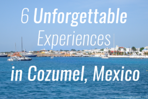6 Things To Do in Cozumel