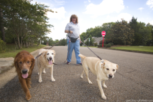 Professional-Pet-Sitter-Great-Choice-for-Travelers-Patricia-Wood-PAWS