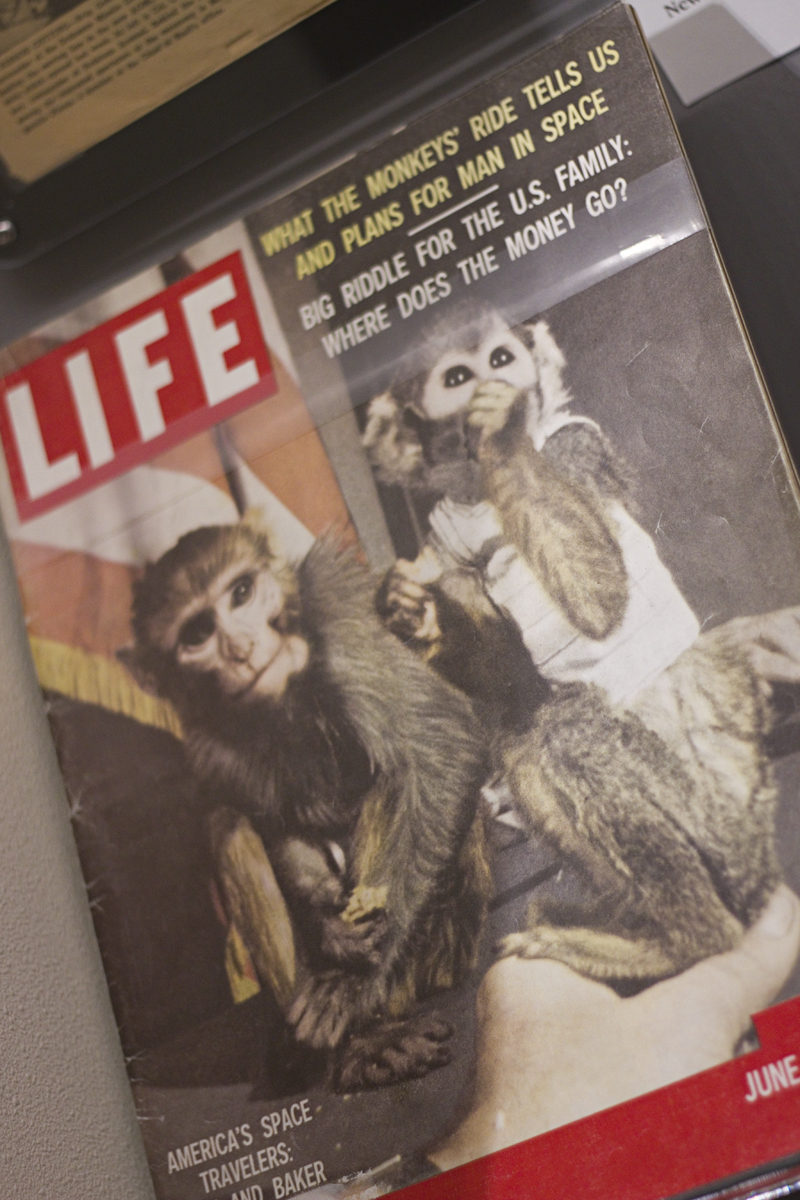 Miss Baker and Miss Able on the cover of LIFE Magazine