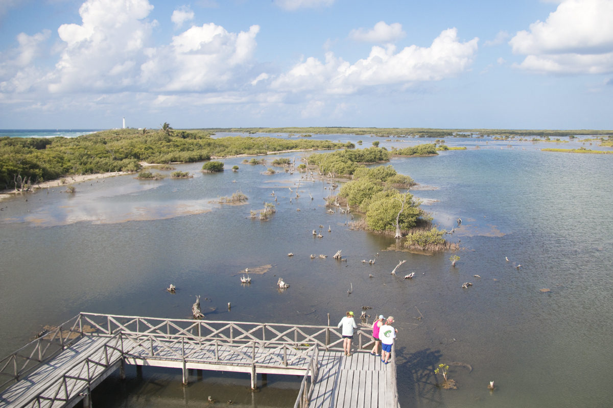 View from the Observation Tower at Punta Sur